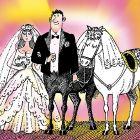 Жених и две невесты, Сергеев Александр