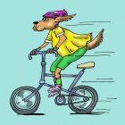 Собака- велосипедист, Мельник Леонид