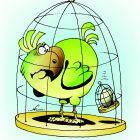 Яйцо в клетке, Кийко Игорь