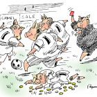 Футболисты-свиньи -копилки, Богорад Виктор