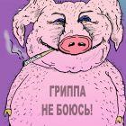 Свиной грипп, Мельник Леонид