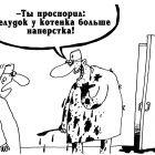 Котенок, Шилов Вячеслав