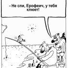 Дятел, Шилов Вячеслав
