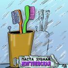 Любимая зубная паста, Мельник Леонид