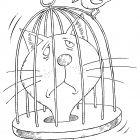 Кот в птичьей клетке, Смагин Максим