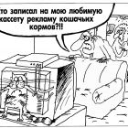 Кот , Шилов Вячеслав