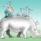 Слепой носорог, Тарасенко Валерий