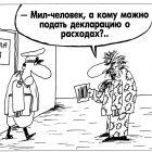 Декларация о расходах, Шилов Вячеслав