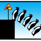 пингвины и потепление воды в океане, Копельницкий Игорь