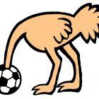 страус на футболе, Копельницкий Игорь