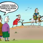 Принцесса полей, Тарасенко Валерий