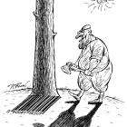 Дерево и штрих-код (ч/б), Бондаренко Дмитрий
