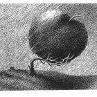 огромное яблоко, Копельницкий Игорь