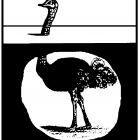 страус под землёй, Копельницкий Игорь