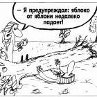 Яблоко и яблоня, Шилов Вячеслав