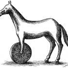 конь, Гурский Аркадий