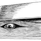 книга с глазом, Гурский Аркадий