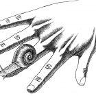 пальцы с улиткой, Гурский Аркадий