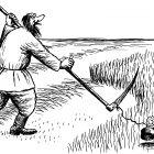 покос травы, Гурский Аркадий