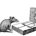 крыса на могиле, Гурский Аркадий