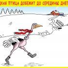 Редкая птица, Тарасенко Валерий