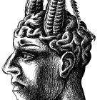 мозг-насекомое, Гурский Аркадий