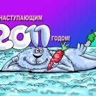 С наступающим, 2011-м!, Мельник Леонид