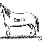 конь е-5, Гурский Аркадий