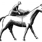 человек на лошади, Гурский Аркадий