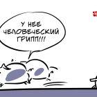 Человеческий грипп, Иорш Алексей