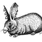 кролик с серьгами, Гурский Аркадий