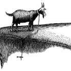 коза на пастбище, Гурский Аркадий