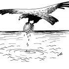 птица с консервной банкой, Гурский Аркадий