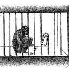 обезьяна в клетке, Гурский Аркадий