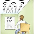 Проверка зрения , Шмидт Александр