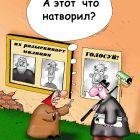выборы, Соколов Сергей