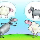 козел и овца , Соколов Сергей