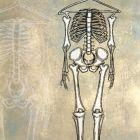 Скелет из шкафа, Лукьянченко Игорь