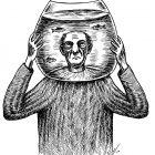 голова в банке, Гурский Аркадий
