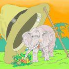 слон в шляпе, Никитин Игорь