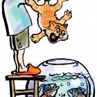 Воспитание детей и животных, Батов Антон