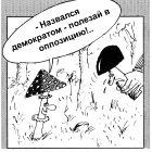 Из жизни грибов, Шилов Вячеслав