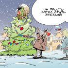 Новогодняя звезда, Подвицкий Виталий