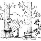 Спасение леса, Дубинин Валентин