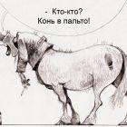 Припозднившийся, Попов Александр