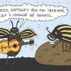 Колорадские жуки, Белозёров Сергей