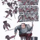 Клетки для птиц, Казаневский Владимир