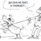 лайки, Кокарев Сергей