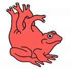 Жаба сердце, Копельницкий Игорь