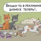 Рекламный агент, Иванов Владимир